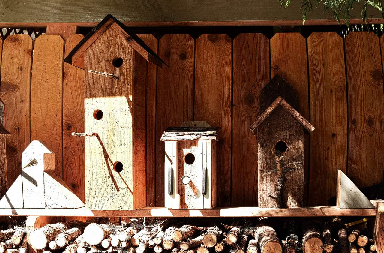 Budowa skrzynki dla ptaków - nagłowek